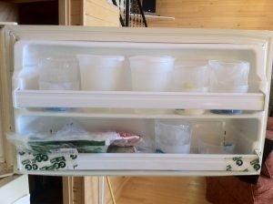 nICE mug stockpiling in the freezer